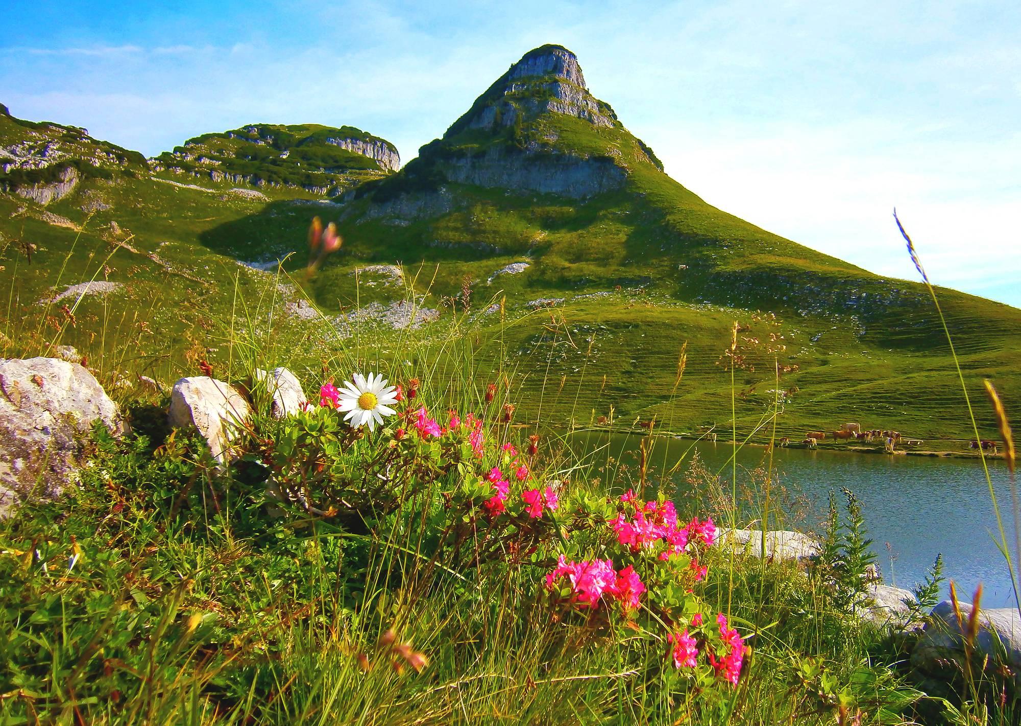 Der Augstsee mit Atterkogel im Hintergrund auf der Spitze des Loserberg